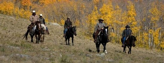 American Safari Ranch: Colorado's Best Horse Back Riding Year Round