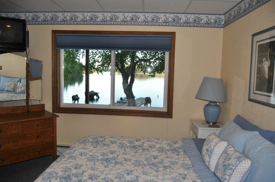 Daniels Lake Lodge Bed & Breakfast