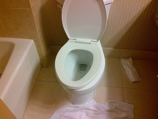 Sheraton Inner Harbor Hotel: broken/dirty toilet on checking in - no response from front desk