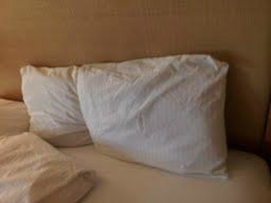 La Quinta Inn & Suites Fort Lauderdale Tamarac: SLEPT IN BED
