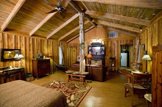 Panther Valley Ranch: JUNGLE SUITE