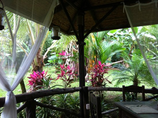 Hotel Kokoro Arenal: our breakfast view