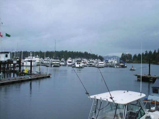 Roche Harbor, WA: Nice view of the marina area