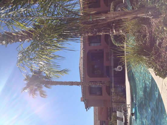 Zona Hotel & Suites Scottsdale : One of 4 pools