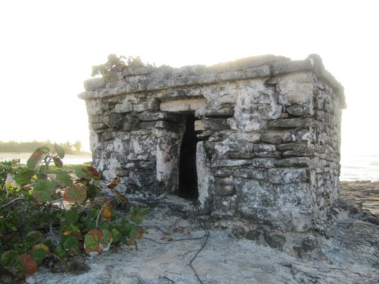 Grand Sirenis Riviera Maya Resort & Spa: ruin on site