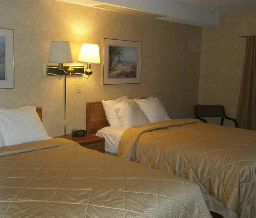 Comfort Inn: Two beds, lots of pillows