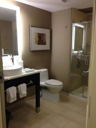 Hilton Inn at Penn: luxurious & modern bathroom