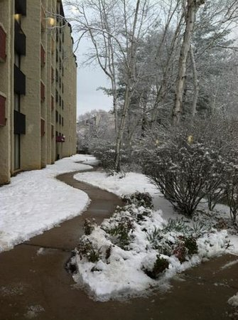Sheraton Roanoke Hotel and Conference Center: beautiful walkway in the snow