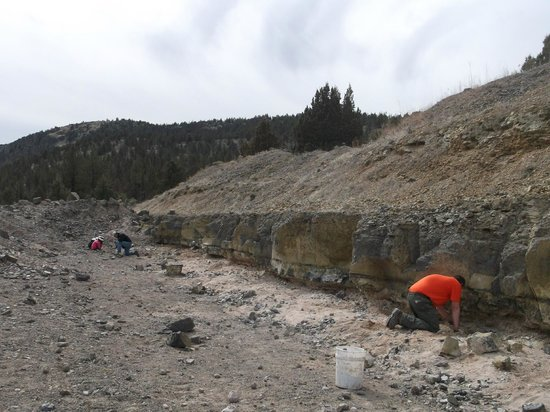 Madras, OR: Digging for thunder eggs at the red agate bed.