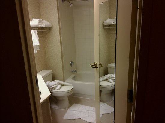 Hampton Inn Baltimore / White Marsh: bathroom