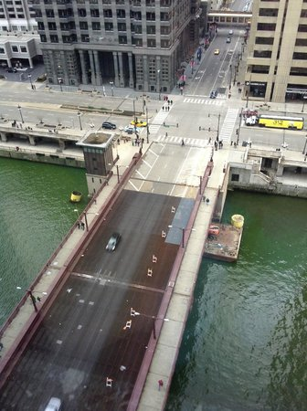The Westin Chicago River North: Green River just for St. Patrick's Day