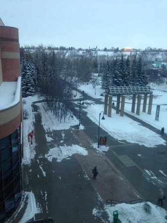 Sheraton Suites Calgary Eau Claire: View from the room