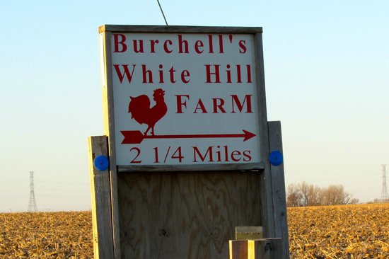 Burchell's White Hill Farmhouse Inn: Easy to find