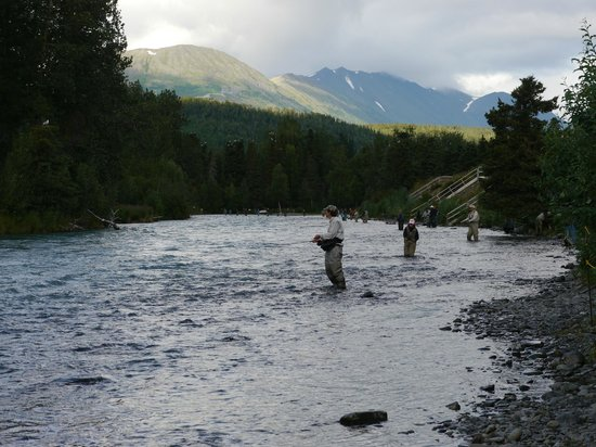 Fishing on the kenai river picture of gwin 39 s lodge and for Kenai river fishing lodges