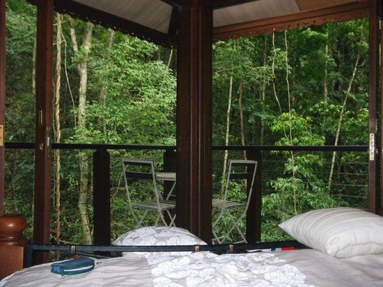 Cairns Reef 'n Rainforest B & B: View out the open doors from the bed!