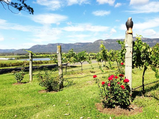 Tuscany Wine Estate Resort: Estate grounds