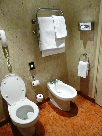 Lancaster London: Heated towel bar and bidet