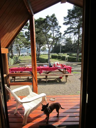 Waldport Newport KOA: View from inside of the cabin