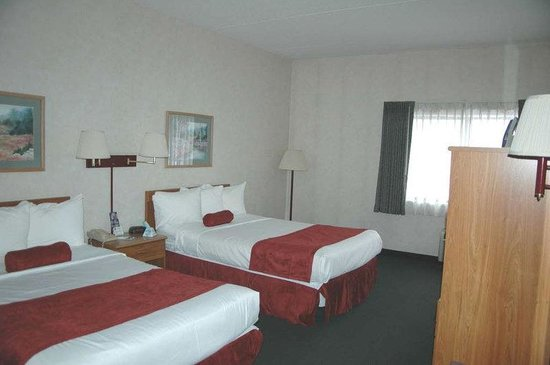 Best Western Inn at Blakeslee-Pocono: Standard Two Double Bed