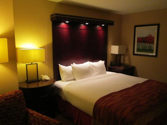 Hilton Burlington: Bed area