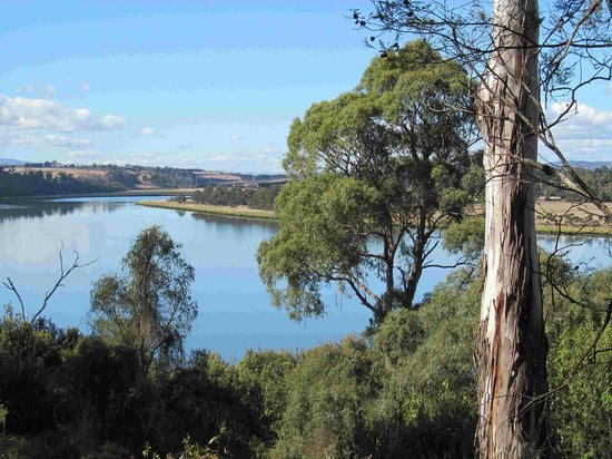 The River House: Tamar River view from property
