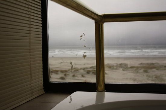 BEST WESTERN Ocean View Resort: Mystery splatter on jetted tub window