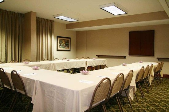 Hampton Inn Staunton: Meeting Room