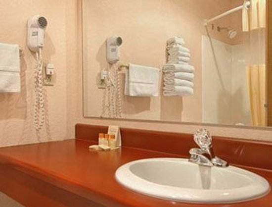 Days Inn Munising (M-28 East): Bathroom
