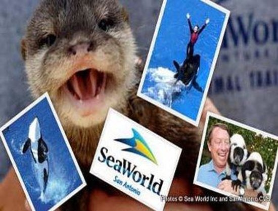 Days Inn San Antonio/Coliseum/AT&T Center: San Antonio SeaWorld