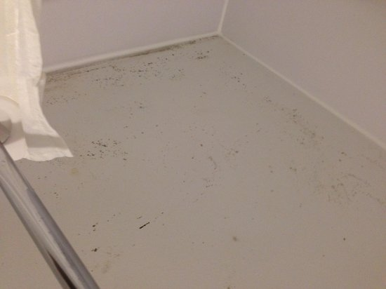 Travelodge Hastings: Mould