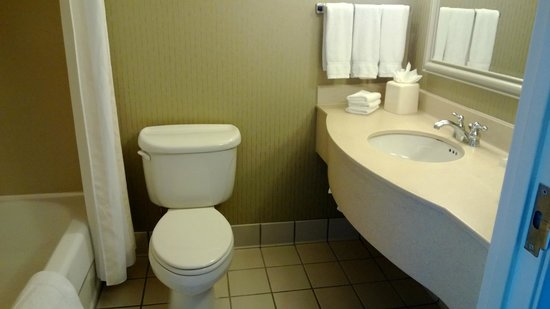 Hampton Inn - McHenry: Bathroom