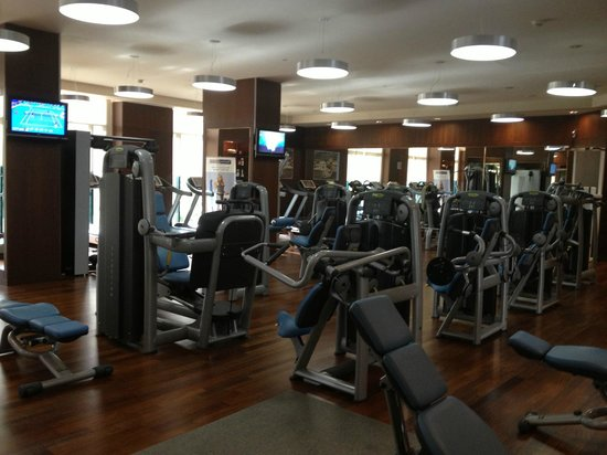 Al Ain Rotana Hotel: The gym