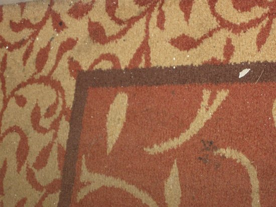 Royal Plaza Hotel: keep your shoes on..would not put my dog on the rugs
