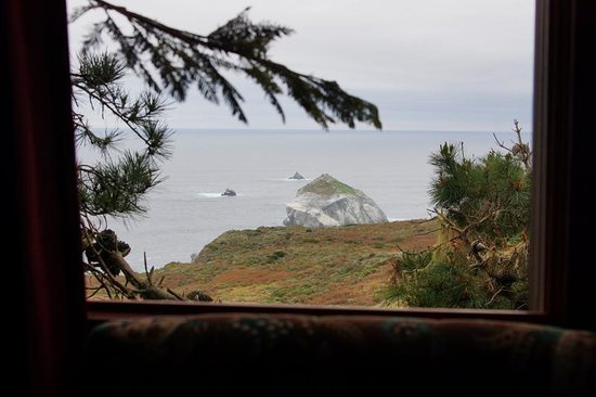 Treebones Resort: View from the treehouse.