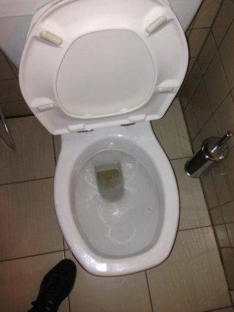 Sofitel Cairo Maadi Towers: Look at the toilet stains