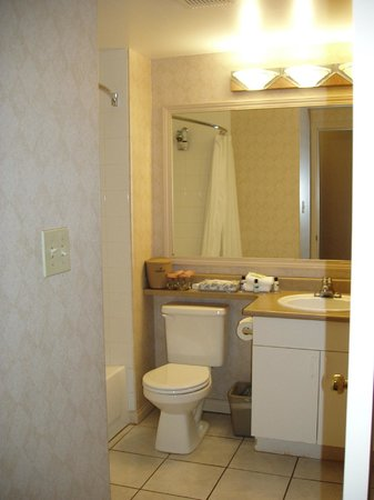 Sandman Hotel Saskatoon: Spacious bathroom
