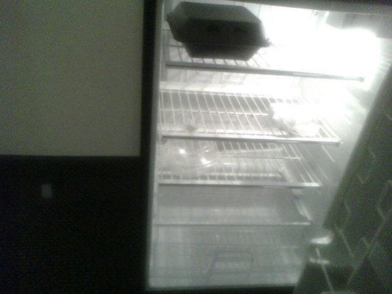 Red Roof Inn Virginia Beach - Norfolk Airport: 5-shelf fridge incl veg bin, no freezer