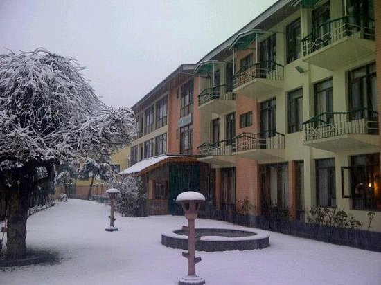 Photo of Pinegrove Hotel Srinagar