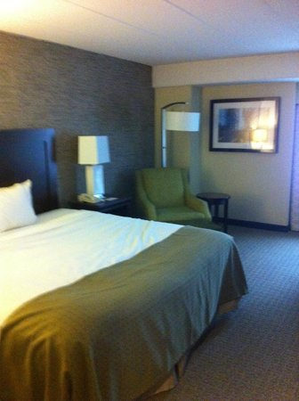Wyndham Pittsburgh University Center: King Room