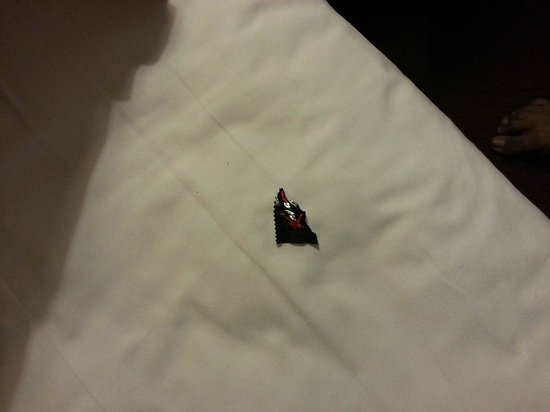 Hotel The Royal Plaza: Condom wrapper found in bed upon check-in