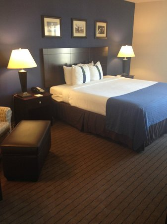 Holiday Inn Bedford DFW Airport Area West: Executive King room