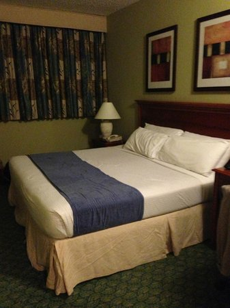 San Juan Airport Hotel: Kingsize Bed Room