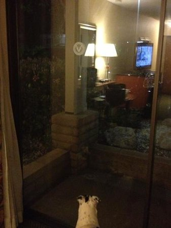 Red Lion Hotel Redding: our big sliding door, just wished it had a screen