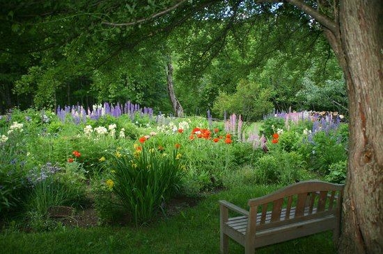 Barnard, Βερμόντ: The perennial garden.