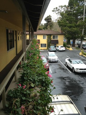 BEST WESTERN Carmel's Town House Lodge: View from end of hall - nice flowers!