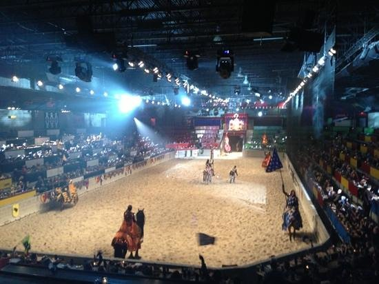 arena picture of medieval times schaumburg tripadvisor. Black Bedroom Furniture Sets. Home Design Ideas