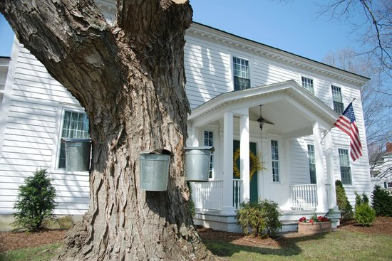 Castleton, VT: Sugar Maple Trees at Applewood Manor: from sap to syrup!