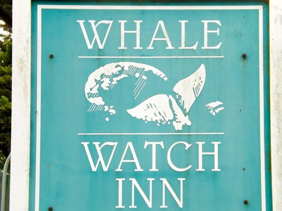 ‪‪Whale Watch Inn by the Sea‬: view‬
