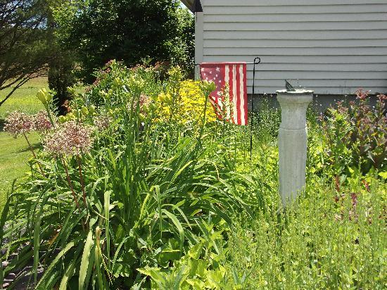 Wiscasset, : Summer in Bloom