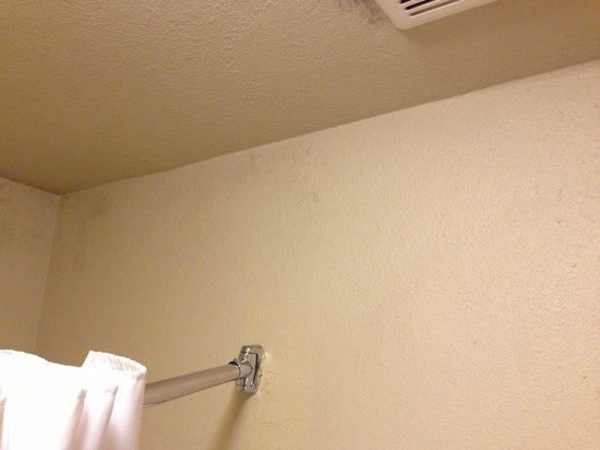 Days Inn Las Vegas At Wild Wild West Gambling Hall: Moldy walls cont.